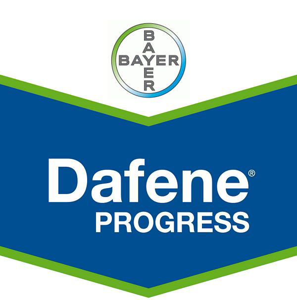 Dafene PROGRESS