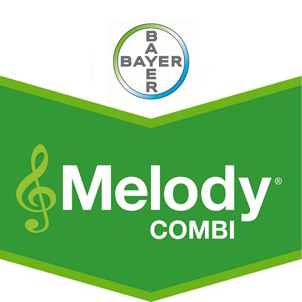 Melody® Combi